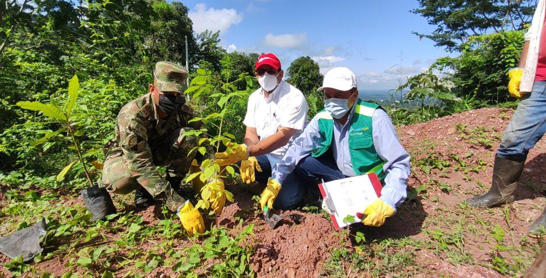 Drummond, la compañía del sector minero que más le ha aportado al programa #SembrarNosUne_3 (1)